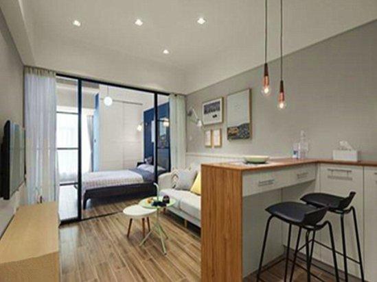 【布艺沙发图片】公寓装修效果图30平米 小户型
